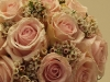 Høstlig rosa