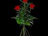 3 røde roser med grønt